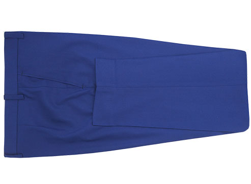 Blue Tuxedo Blue Lapels - Back pants